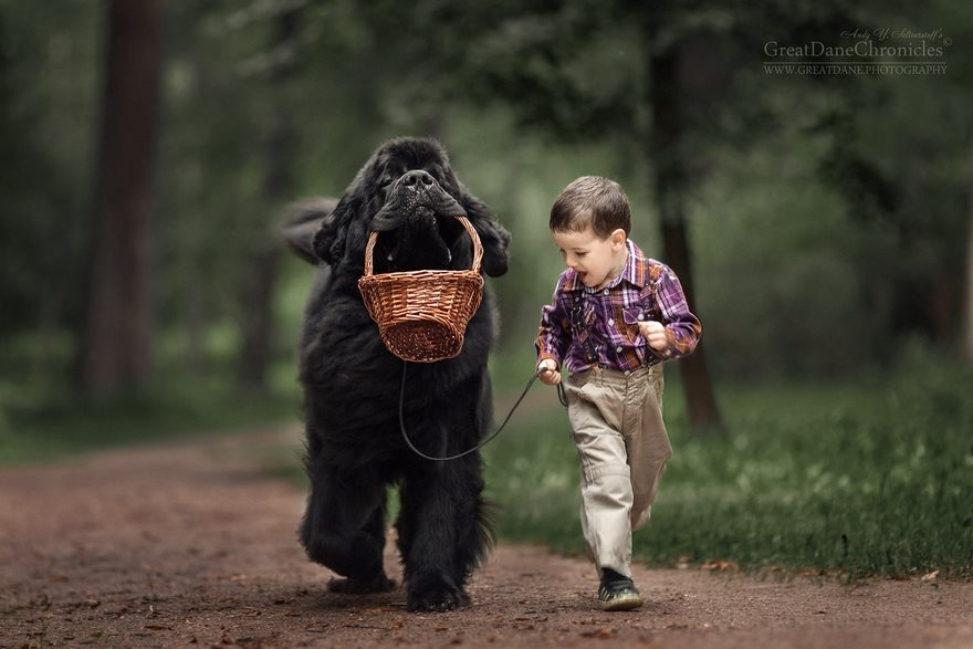 kids-play-big-dogs-photography-andy-seliverstoff-7