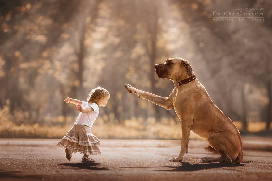 kids-play-big-dogs-photography-andy-seliverstoff-9