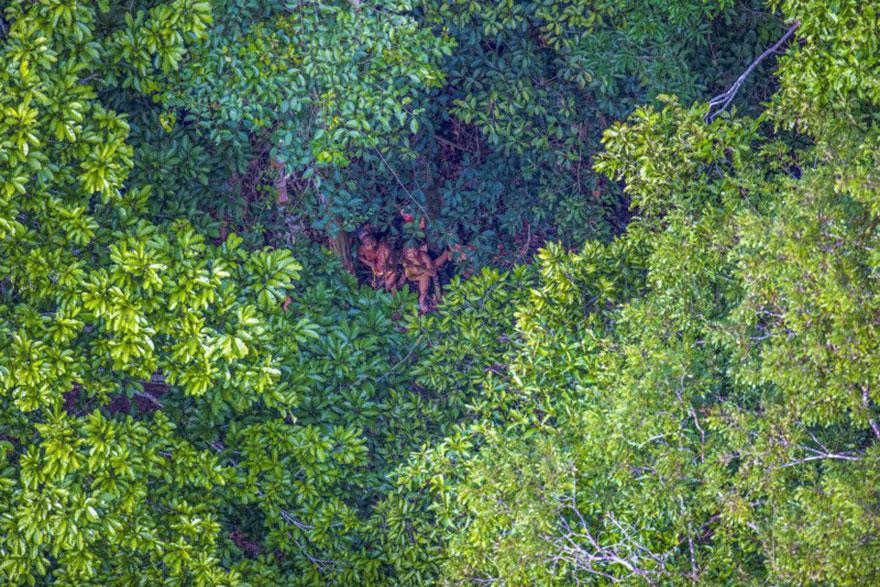new-tribe-found-amazon-photos-ricardo-stuckert-3
