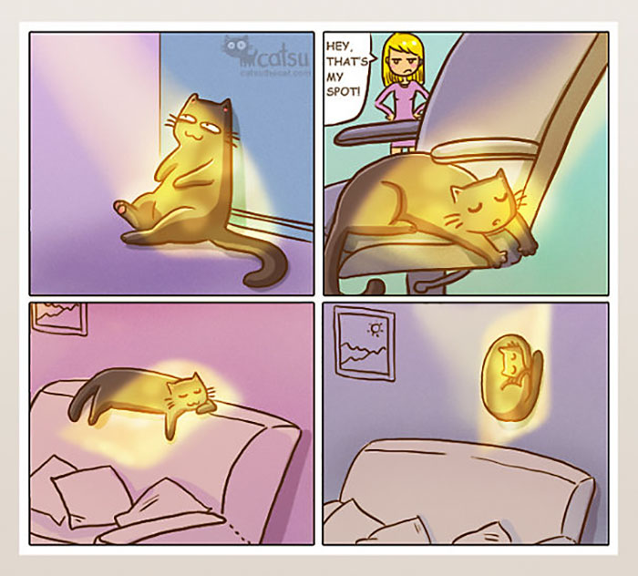 funny-cat-owner-comics-8