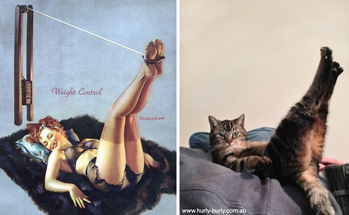 funny-cats-vintage-pin-up-girls-6