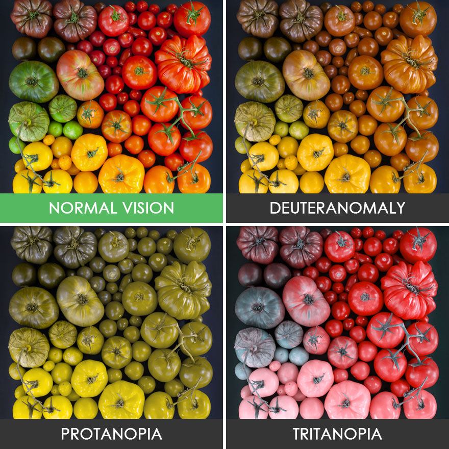 You ll be surprised how people with color blindness see for What color do you like