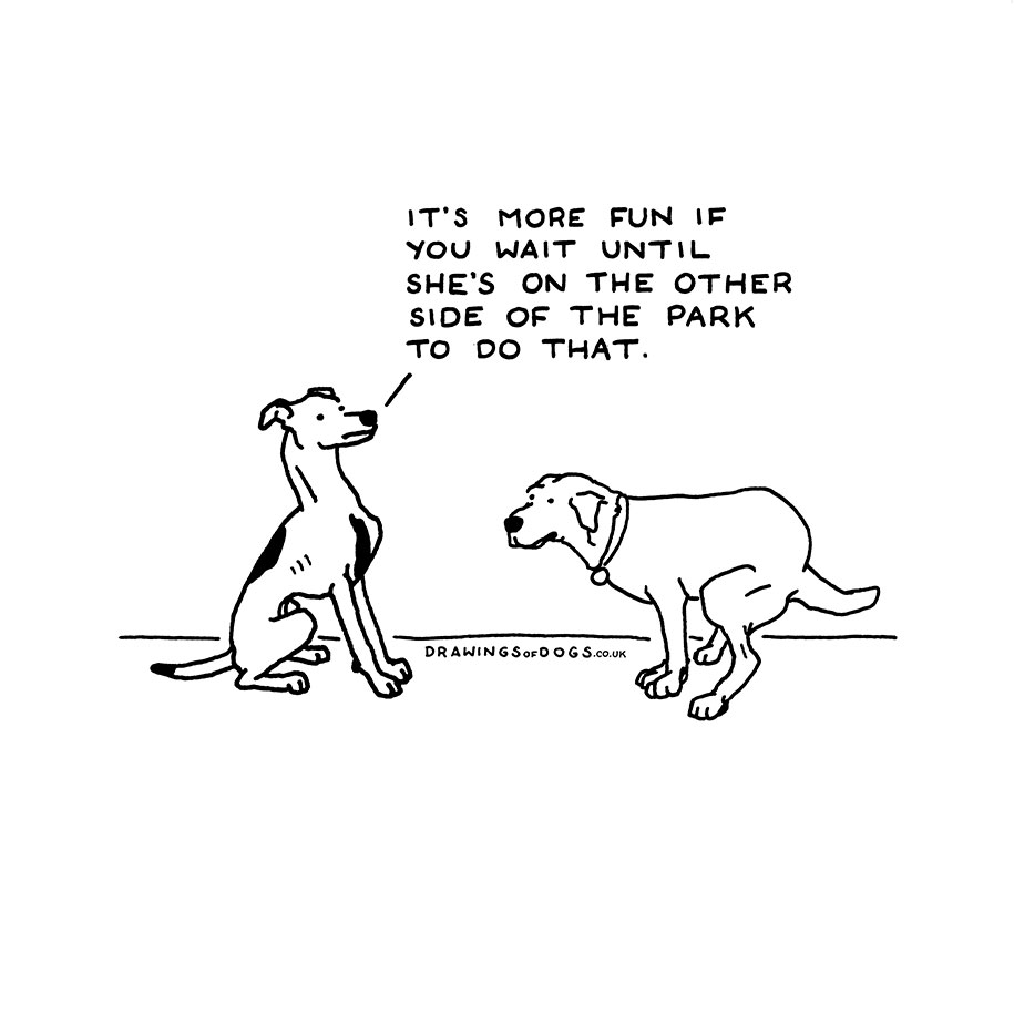 If Dogs Could Speak Artist S Hilarious Illustrations That