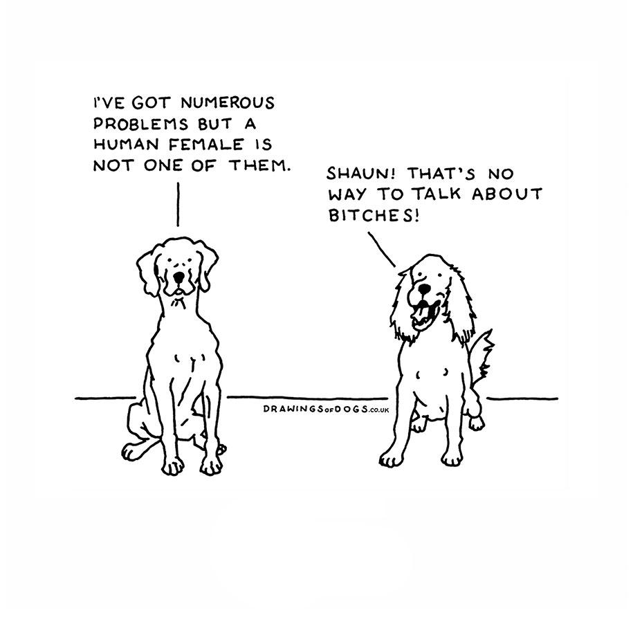 Uncategorized Funny Dog Drawings if dogs could speak artists hilarious illustrations that helped 5