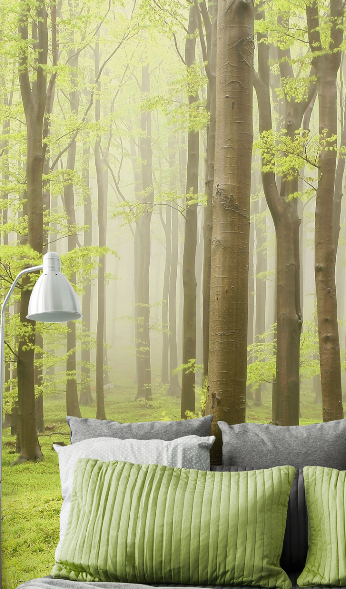 15 Remarkable Landscape and Forest Wallpapers for your bedroom