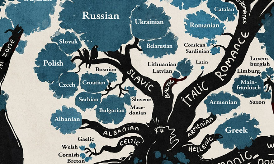 This Amazing Linguistic Tree Reveals How Most Languages Are Connected - How many people speak each language