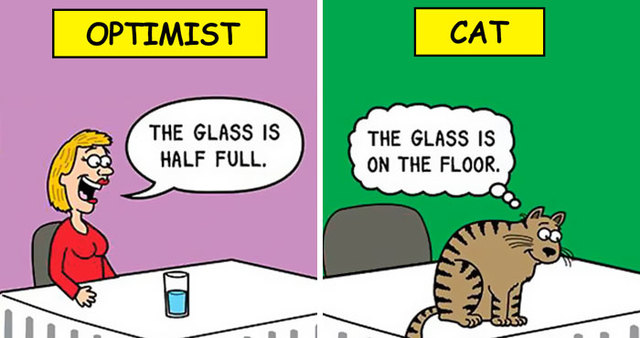 Man draws series of cat comics for more than 20 years here are 40 best ones - Cat cartoon shows ...