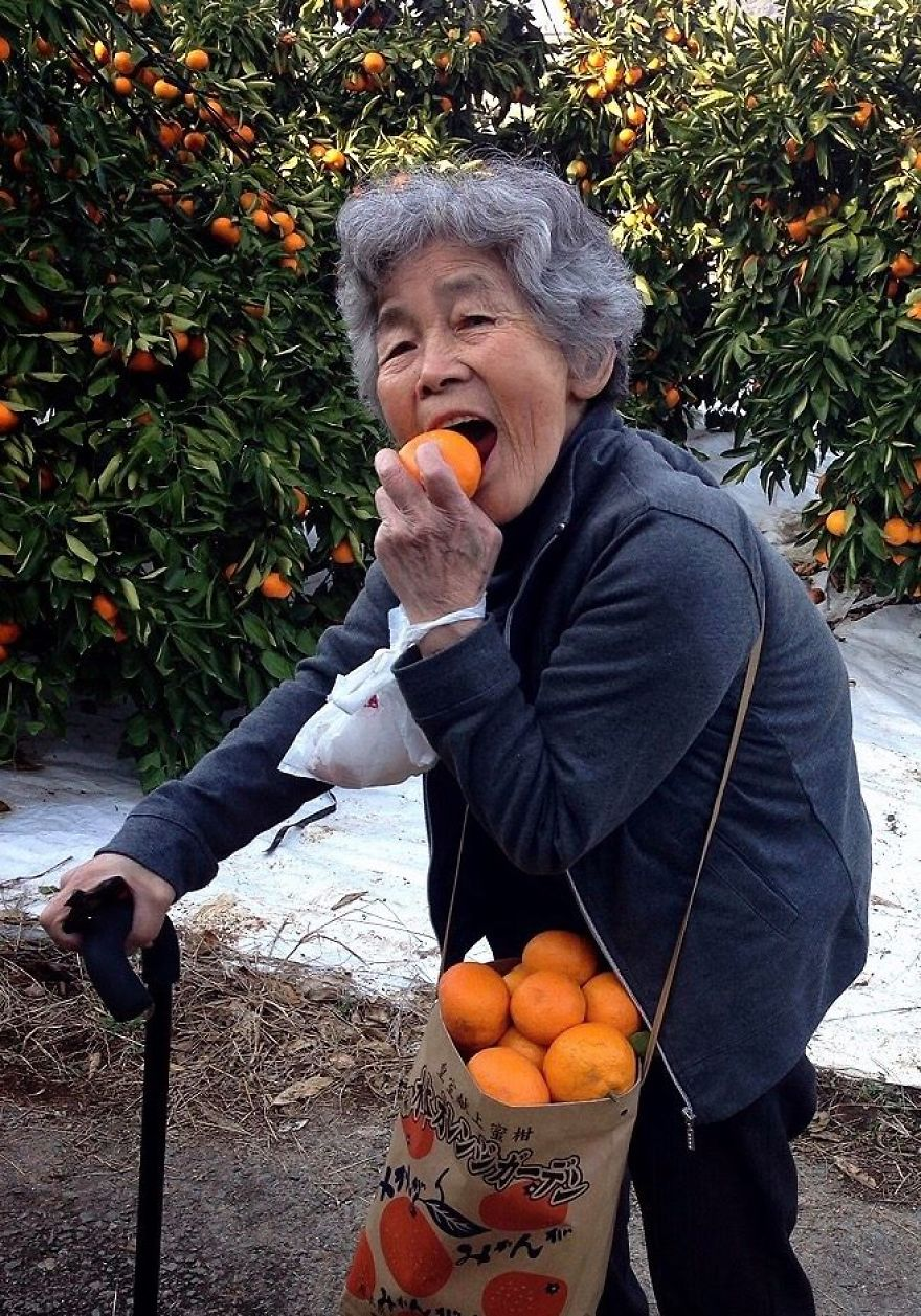 This 90-Year-Old Japanese Grandmother Learned Photography