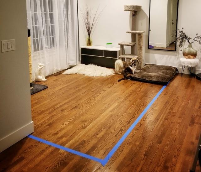 Reddit User Turns His Living Room Into