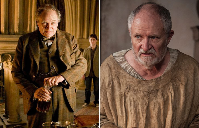 14 Actors Who Were Lucky Enough To Star In Harry Potter And Game Of Thrones Demilked