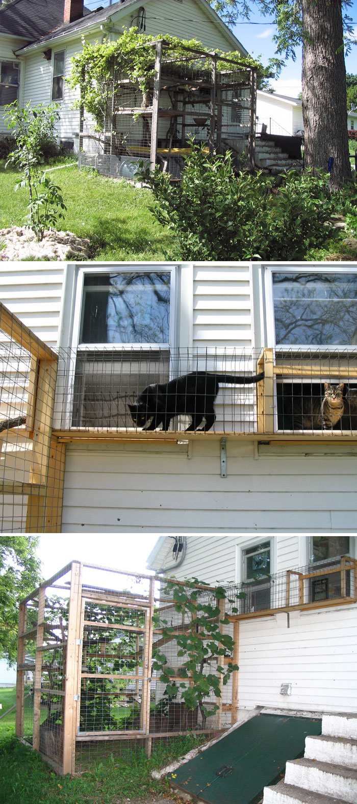 People Are Constructing Cat Patios For Their Cats And