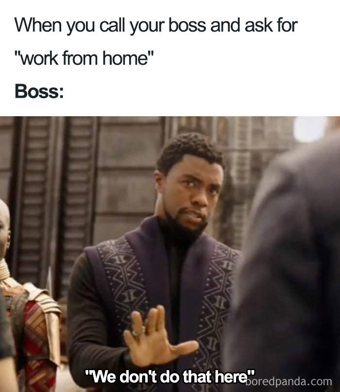 30 Funny Boss Memes You Probably Shouldn T Be Looking At At