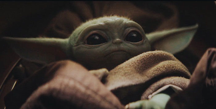 an adorable 50 year old baby yoda appeared in the. Black Bedroom Furniture Sets. Home Design Ideas