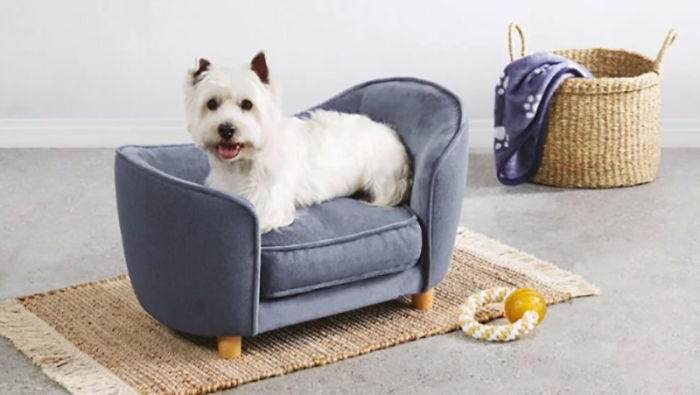 Aldi Releases A Line Of Tiny Dog Sofas