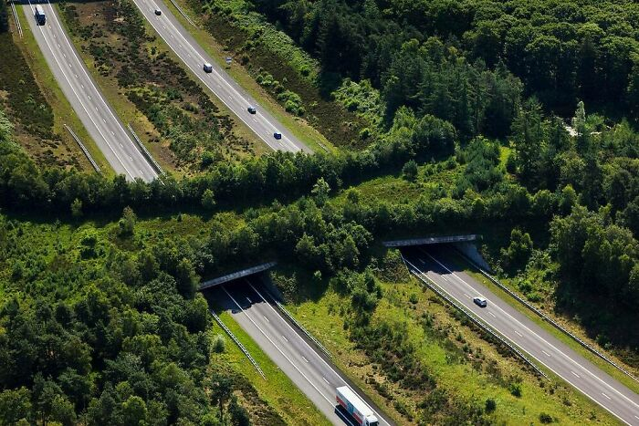 30 Impressive Examples Of Infrastructure That Will Make You Appreciate Engineers Anew