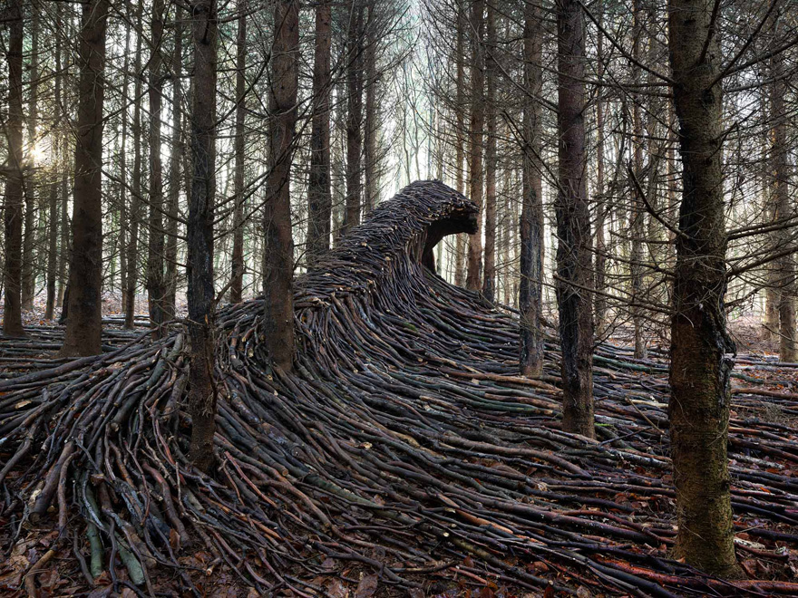 This German Artist Hid 9 Giant Dead Wood Waves In The Woods Of Hamburg