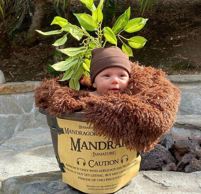30 Most Adorable And Creative Costumes That Kids Wore For Halloween